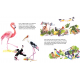 Birdywood Buzz: The Vulture Returns (English)